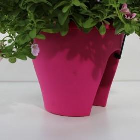 Balkonhanger - Roze